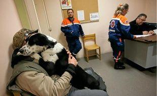 Dans ce foyer, géré par les secouristes de la Protection civile, on peut venir avec son chien.