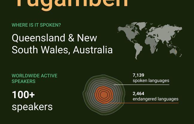 Google veut sauver 10 langues en danger de disparition