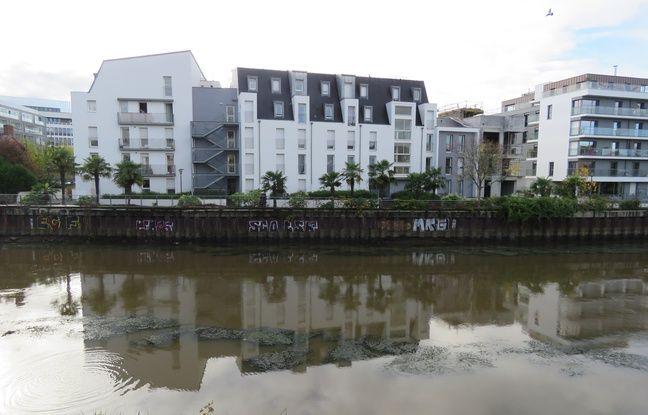 La digue d'Auchel qui protège les habitations des crues de Vilaine à Rennes va être rénovée.