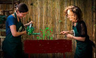 Ludivine et Marie, les deux créatrices de l'association Les jardinières partagées.