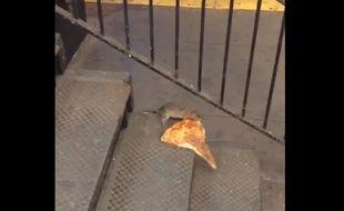 Capture d'écran de la vidéo de Matt Little montrant «Pizza Rat» transporter une part de pizza dans une station de métro de New York, le 21 septembre 2015.