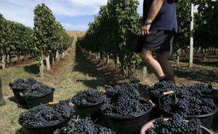 Comme à château Réaut, un Côtes de Bordeaux où quelques-uns des 400 propriétaires du vignoble ont effectué samedi leur première vendange, de plus en plus de particuliers caressent le rêve d'acheter en commun une propriété et de percevoir des bouteilles en retour de leur investissement.