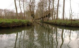 Des canaux du Marais Poitevin, en mars 2007 à Coulon