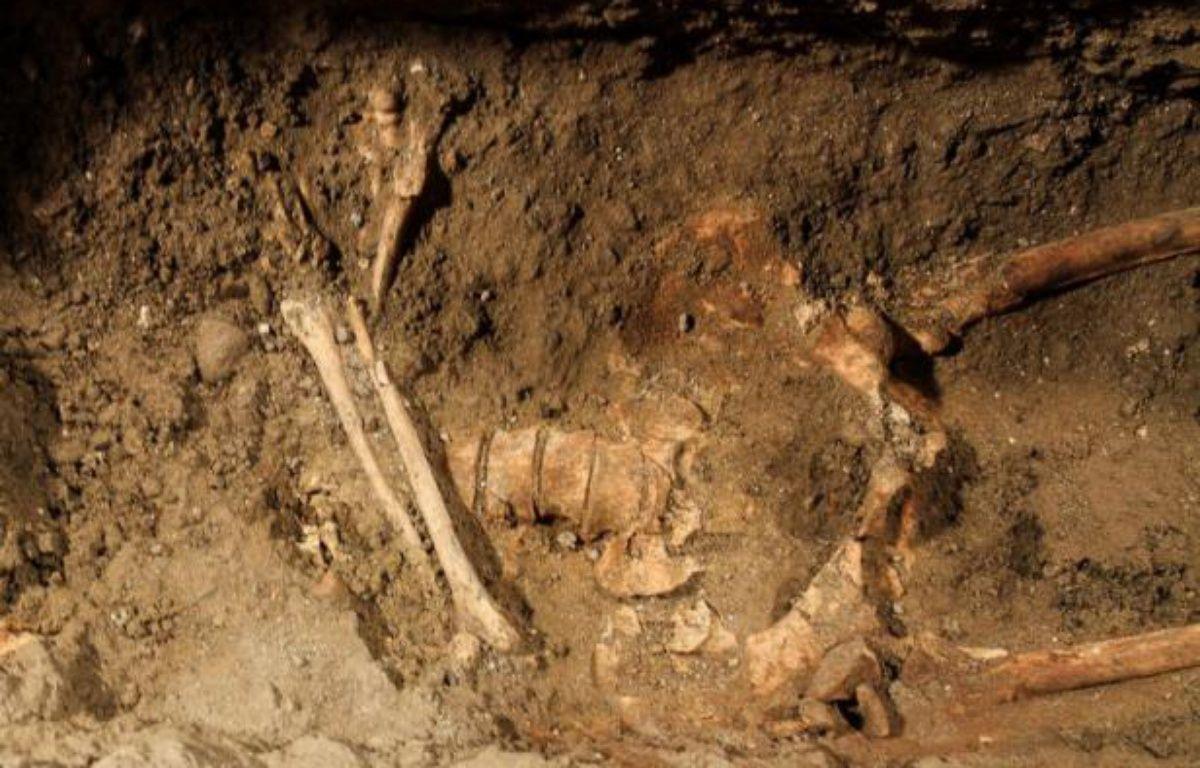 Le squelette que les experts italiens attribuent à Lisa Gherardini. – CLAUDIO GIOVANNINI/AFP
