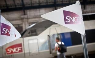 Un passager à côté d'un TGV en gare de Bordeaux, le 9 juillet 2012