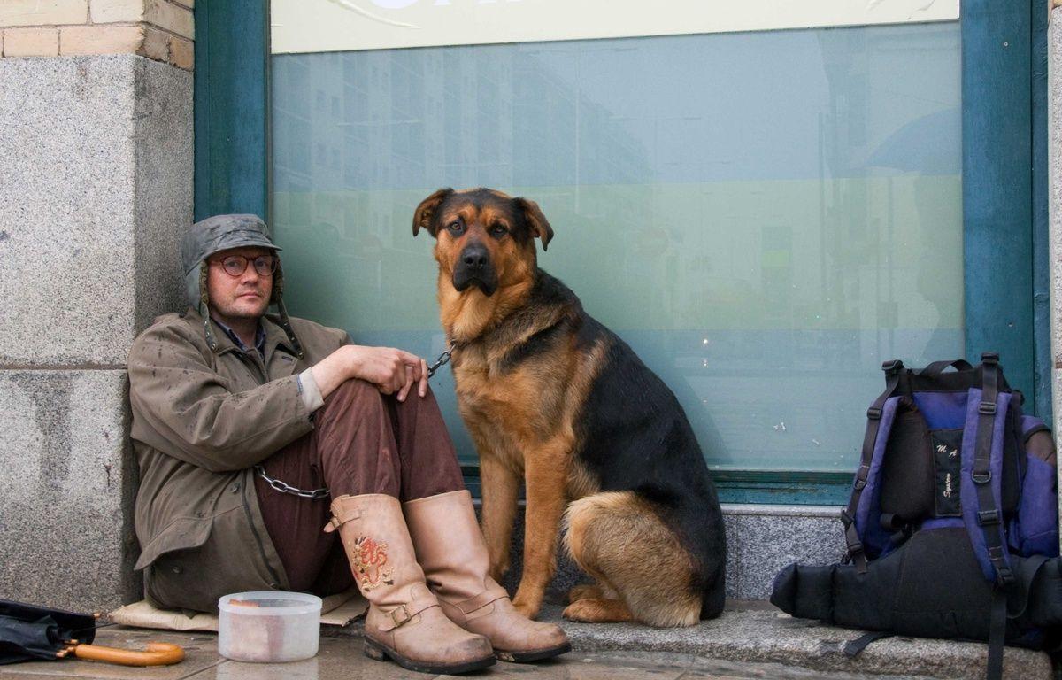 Un sans-abri avec son chien dans la rue.  – SAEZ PASCAL