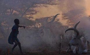 Un enfant garde le troupeau familial dans la ville de Nyal, au Soudan du Sud le 25 février 2015