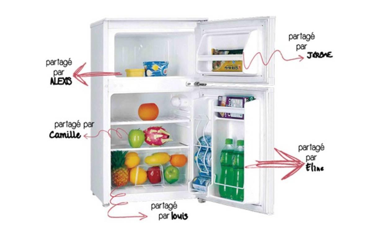 L'idée a été lancée en France par l'association  – Partage ton frigo