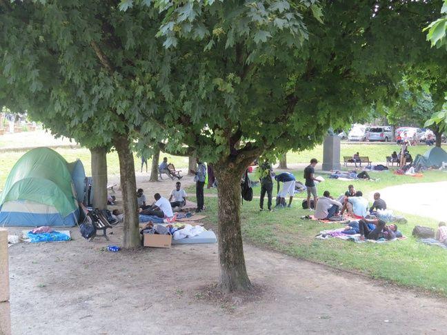 Des dizaines de toiles de tente sont installées.