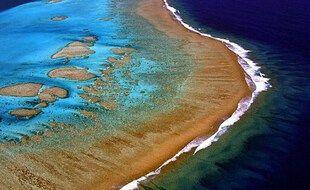 La France est au 4erang des payscoralliens, notamment grâce au récif de la Nouvelle-Caledonie, l'un des plus grands au monde.