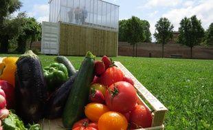 La première ferme urbaine où sont cultivés des légumes grâce à la technique de la culture aquaponique est expérimentée au Jardin Raymond VI, à Toulouse, par Citizen Farm.