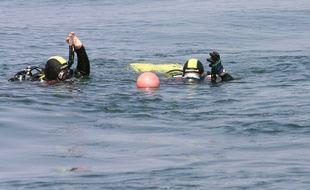 Des plongeurs. (Illustration)