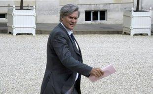 Le ministre de l'Agriculture, Stéphane Le Foll, le 24 juin 2015 à Paris
