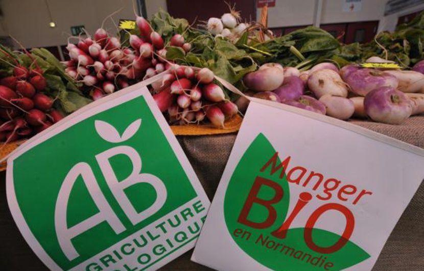 Bio : Les grandes surfaces vendent les fruits et légumes bio bien trop chers, révèle « Que Choisir »