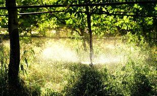 Illustration irrigation, sécheresse