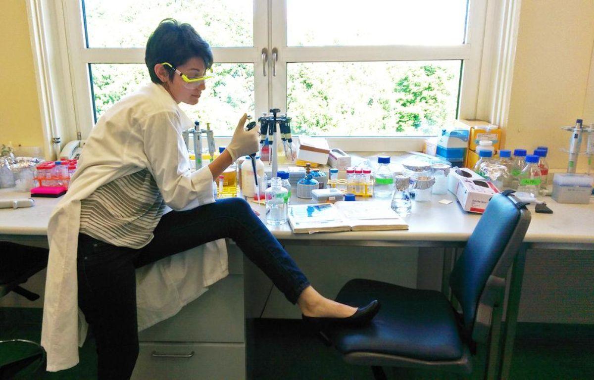 Des femmes scientifiques répondent avec humour sur Twitter à des propos sexistes. – Twitter/MegMassa