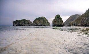 L'image de Greenpeace montre l'état de l'eau sur la plage de Khalaktyr.