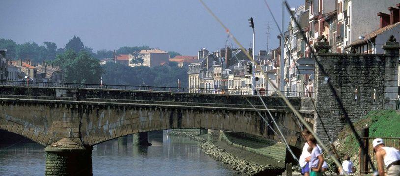 Illustration pêche à Bayonne