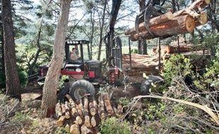 Les communes veulent développer le chauffage au bois de débroussaillement.