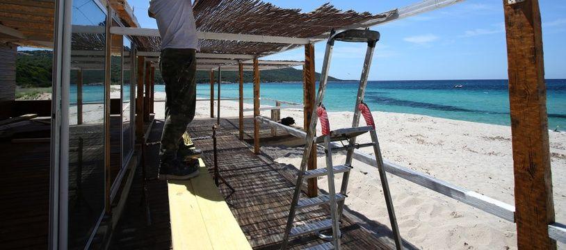 Un homme construit une paillotte sur la plage de Chivarari en Corse.
