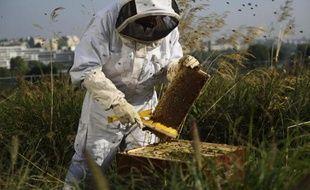 Un apiculteur récolte pour la première fois du miel le 9 septembre 2014, sur les toits du centre commercial Beaugrenelle, à Paris