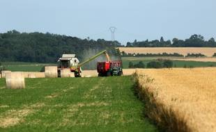 Illustration d'une exploitation agricole.