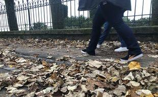 Le 6 décembre 2019- Illustration de feuilles mortes quartier Chantenay à Nantes