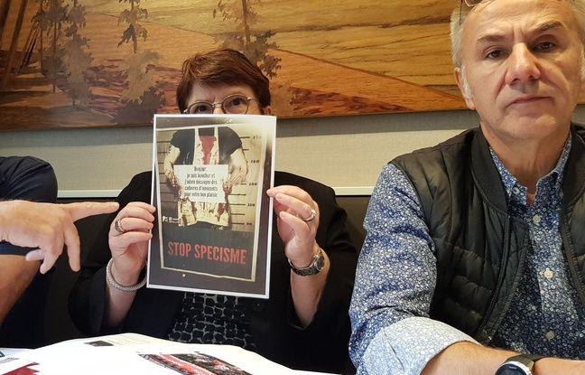 Strasbourg: La fédération des bouchers charcutiers traiteurs d'Alsace dénoncent les actions et campagnes d'affichage des associations antispécistes.