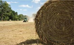 L'institut national de la recherche agronomique estime que «cet épisode de sécheresse correspond à la moyenne à attendre dans les années à venir ».
