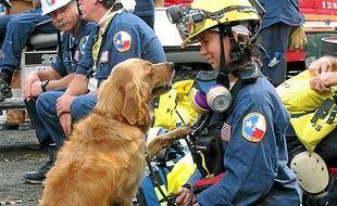 La chienne Bretagne et Denise Corliss sur le site des Twin Towers en 2001.