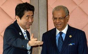 """Le Japon et une quarantaine de pays africains ont souhaité lundi développer les investissements privés japonais en Afrique, région qui sera """"au coeur du développement"""" dans les prochaines décennies assure le Premier ministre nippon."""
