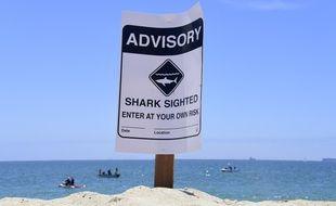 Un panneau alertant de la présence de requin sur la plage de Long Beach en Californie, le 16 mai 2017.