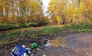 Des déchets sur les bords des routes. (illustration)