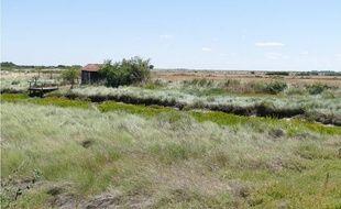 Le parc naturel régional doit permettre de valoriser le patrimoine naturel.
