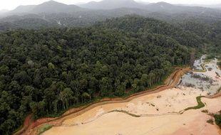 Le Parc Amazonien de Guyane, une des plus vastes zones terrestres protégées du monde.