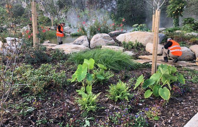 Le Jardin extraordinaire aménagé dans la carrières Miséry à Nantes