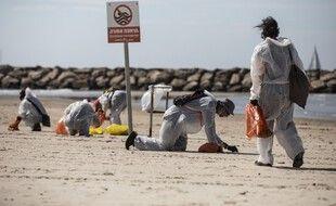 Des volontaires nettoient les plages d'Israël après une marée noire, fin février 2021.