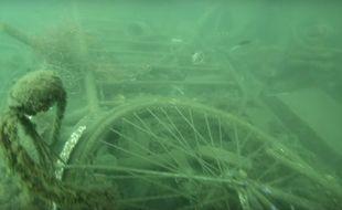 Extrait de la vidéo de Sea Sheperd dans le Vieux-Port de Marseille