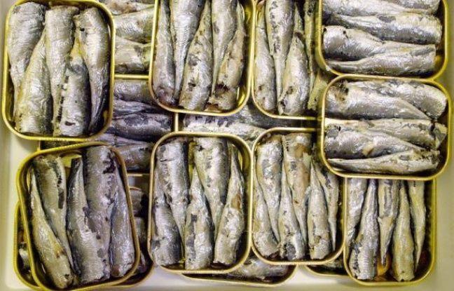 les sardines en bo te ont 200 ans. Black Bedroom Furniture Sets. Home Design Ideas