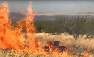 L'explosion de la cible révélant le sexe du bébé a provoqué le début d'un incendie.