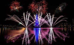 Des feux d'artifice illuminent le ciel de Rio lors de l'inauguration de l'arbre de Noël flottant le plus grand au monde, le 29 novembre 2014.
