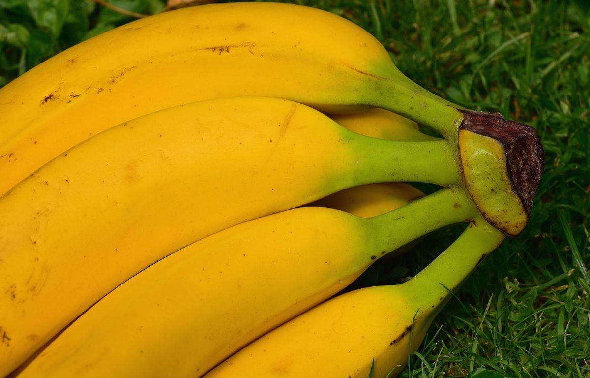 Des bananes n'ont jamais été injectées avec le VIH. – Pixabay