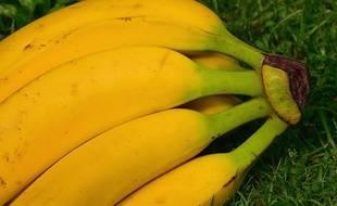 Des bananes n'ont jamais été injectées avec le VIH.