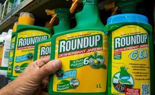 """Le désherbant """"Roundup"""" produit par Monsanto en vente dans un magasin de jardinage de Lille, le 14 juin 2015"""