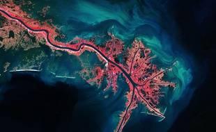 Le Mississippi, photographié de l'espace en 2013, a l'apparence d'un vaisseau sanguin vu au microscope.
