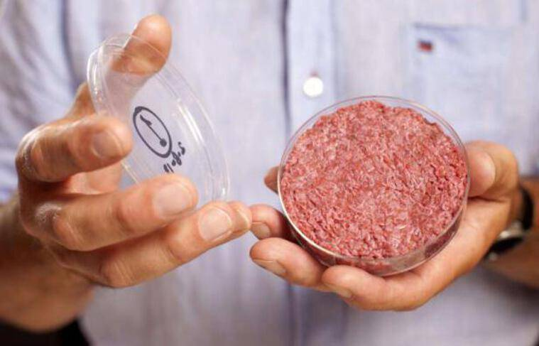 Un steak haché composé de viande artificielle cultivée «in vitro», par le chercheur de l'université de Maastricht, Mark Post.
