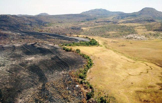 nouvel ordre mondial | Brésil: Un parc national ravagé par un incendie