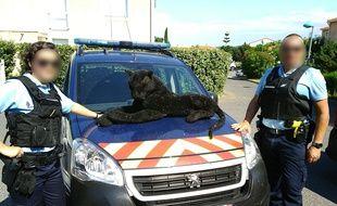 La peluche retrouvée par les gendarmes