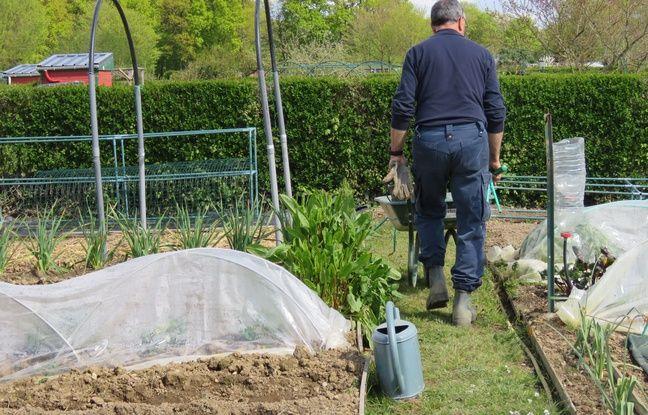 228 parcelles de jardins familiaux sont recensées sur le site de la Prévalaye.