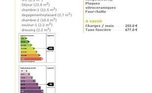 Les étiquettes de performance énergétique, obligatoires sur les annonces immobilières à compter du 1er janvier 2011.